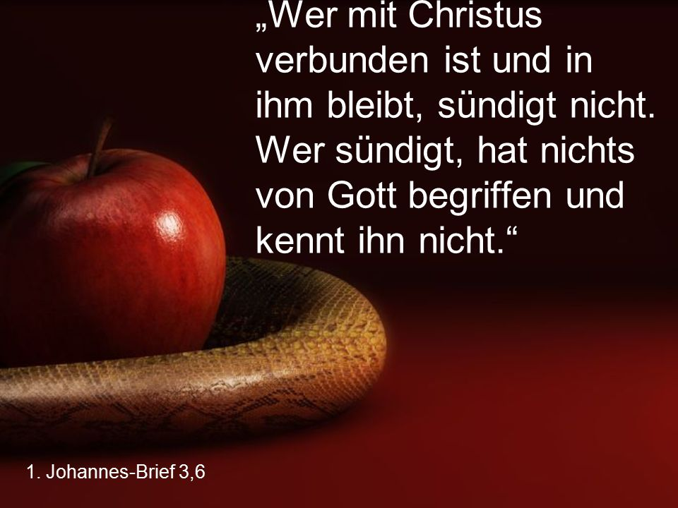 """""""Wer mit Christus verbunden ist und in ihm bleibt, sündigt nicht"""