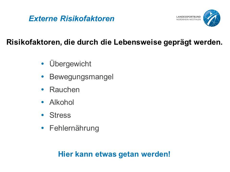 Externe Risikofaktoren