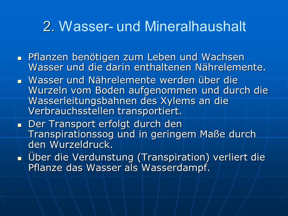 2. Wasser- und Mineralhaushalt