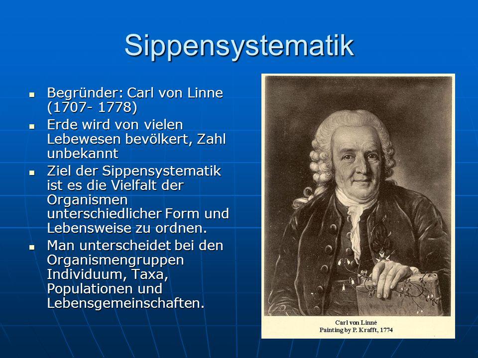 Sippensystematik Begründer: Carl von Linne (1707- 1778)