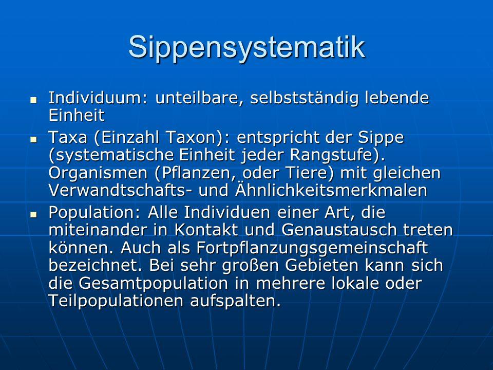 Sippensystematik Individuum: unteilbare, selbstständig lebende Einheit