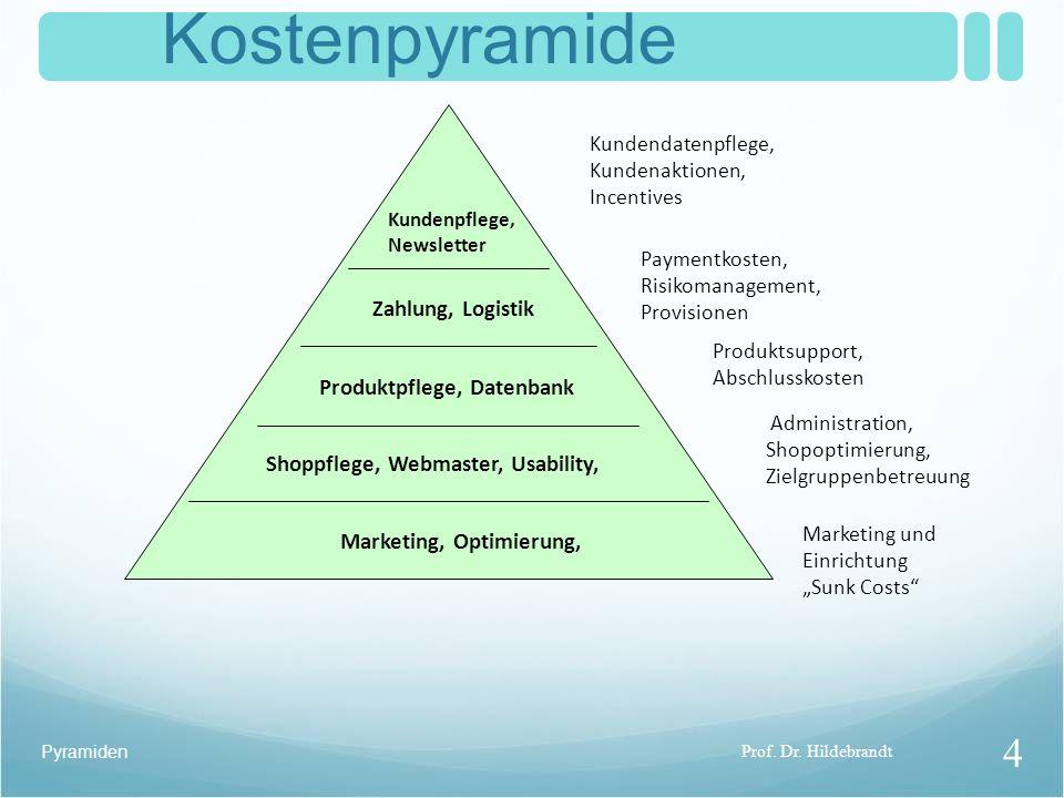 Kostenpyramide Zahlung, Logistik Produktpflege, Datenbank