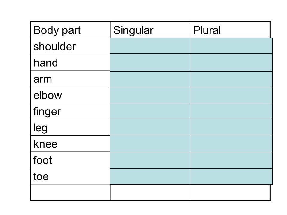 Body part Singular. Plural. shoulder. die Schulter. die Schultern. hand. die Hand. die Hände.