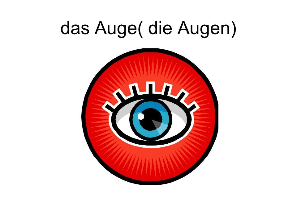 das Auge( die Augen)