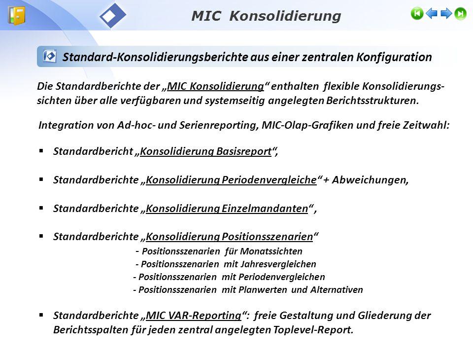 Standard-Konsolidierungsberichte aus einer zentralen Konfiguration
