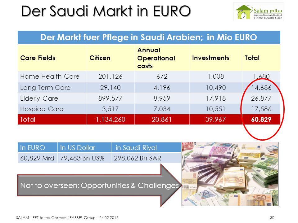 Der Markt fuer Pflege in Saudi Arabien; in Mio EURO
