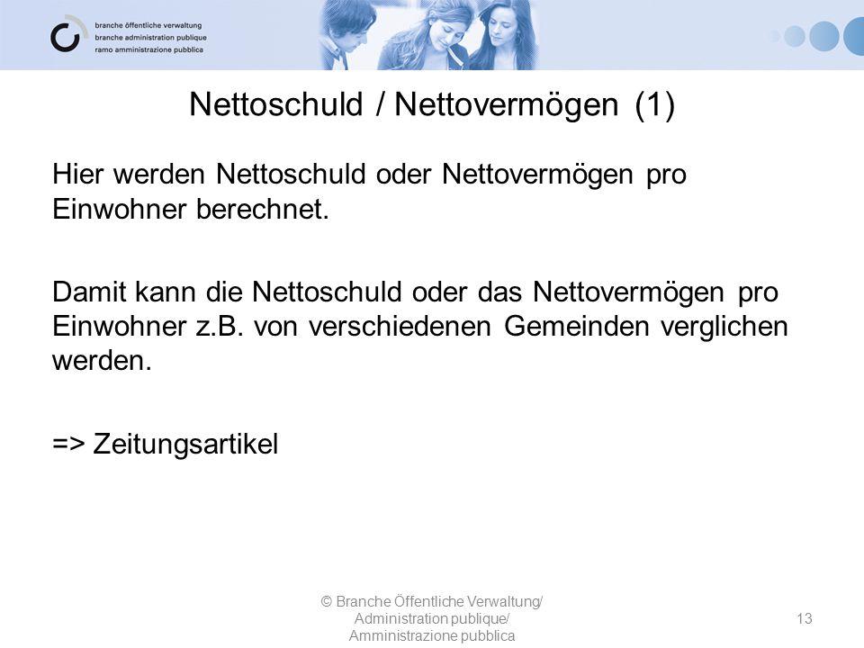 Nettoschuld / Nettovermögen (1)