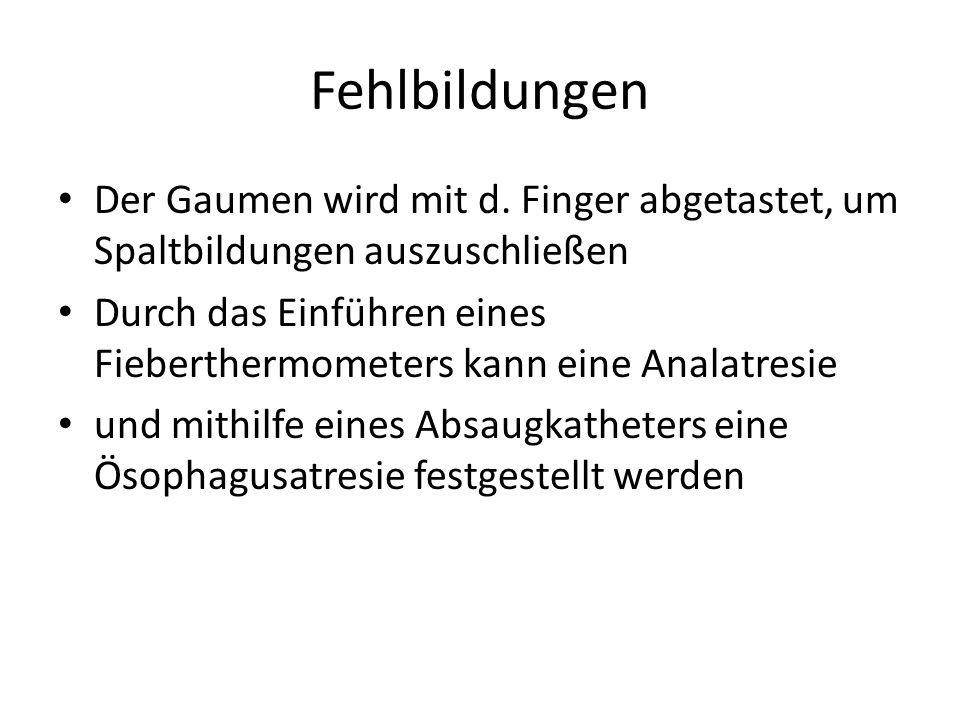 Fehlbildungen Der Gaumen wird mit d. Finger abgetastet, um Spaltbildungen auszuschließen.