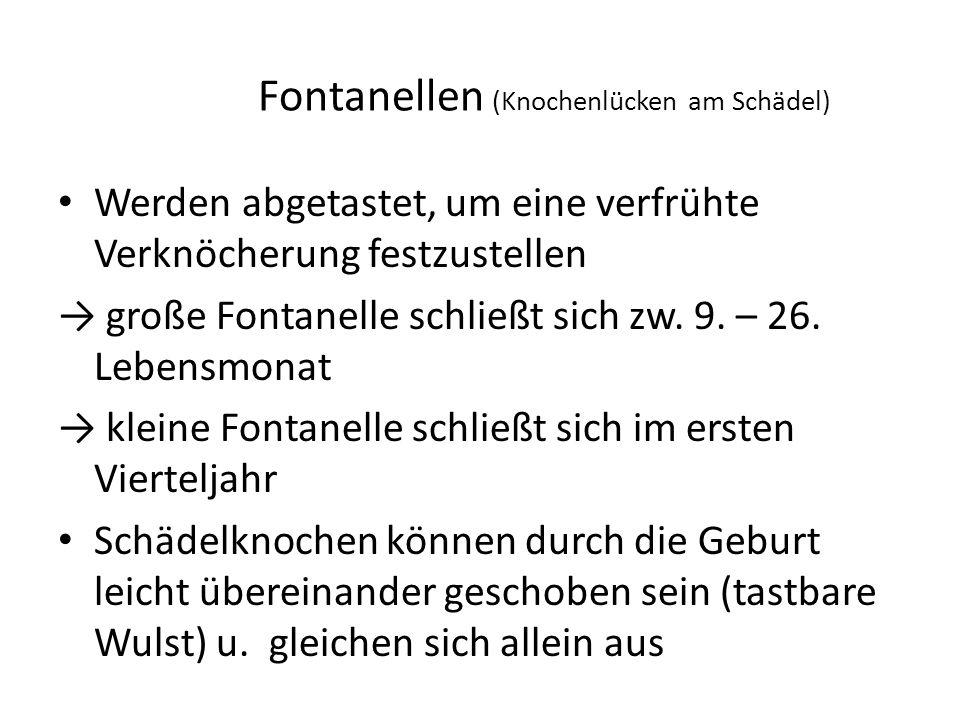 Fontanellen (Knochenlücken am Schädel)