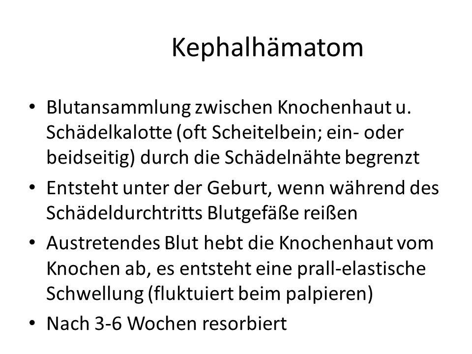 Kephalhämatom Blutansammlung zwischen Knochenhaut u. Schädelkalotte (oft Scheitelbein; ein- oder beidseitig) durch die Schädelnähte begrenzt.
