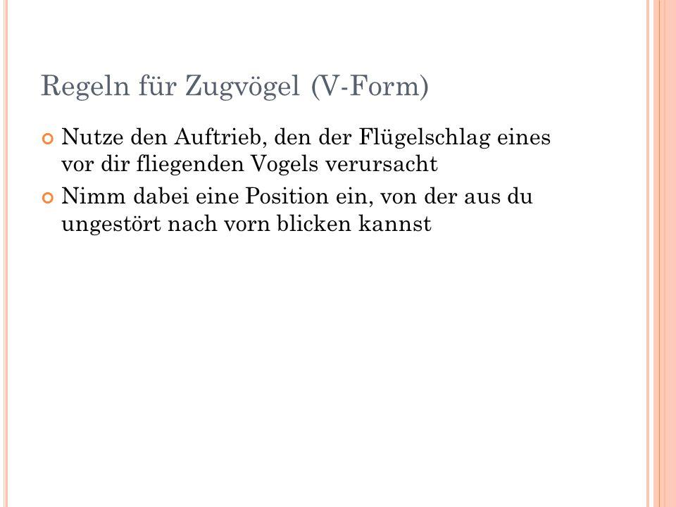 Regeln für Zugvögel (V-Form)