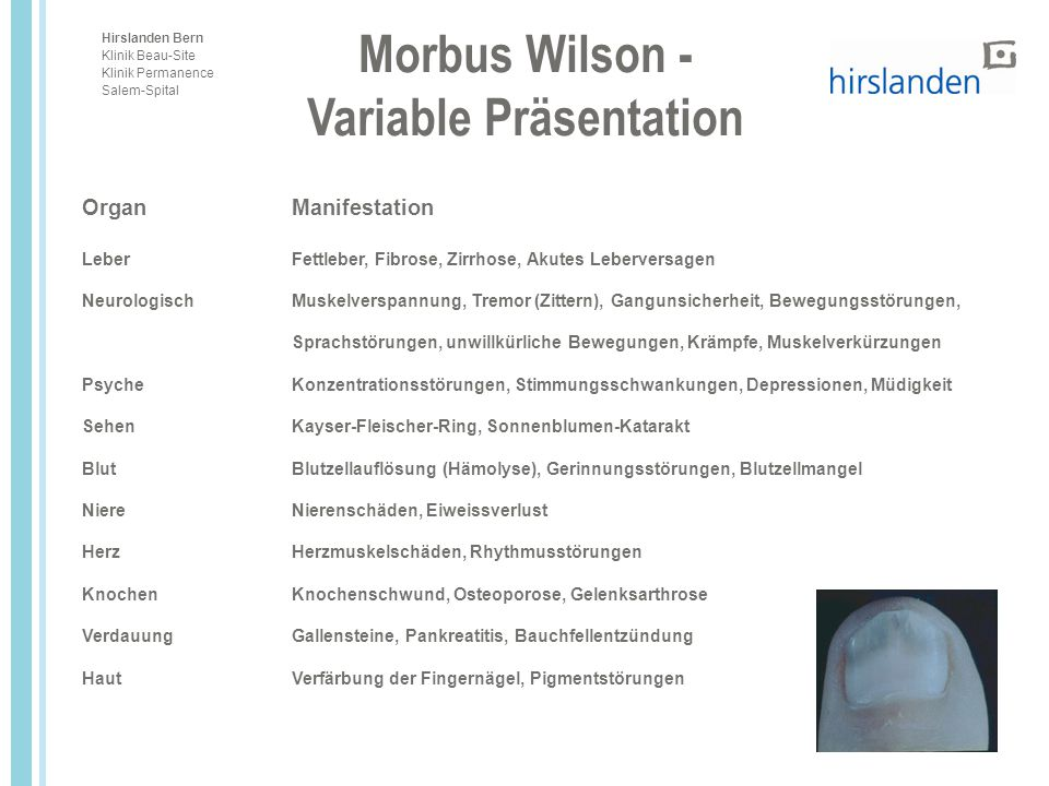 Variable Präsentation