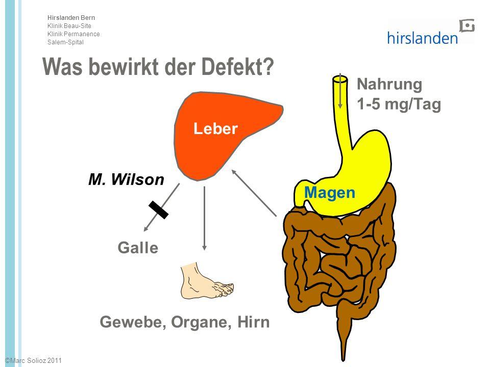 Was bewirkt der Defekt Nahrung 1-5 mg/Tag Leber M. Wilson Magen Galle