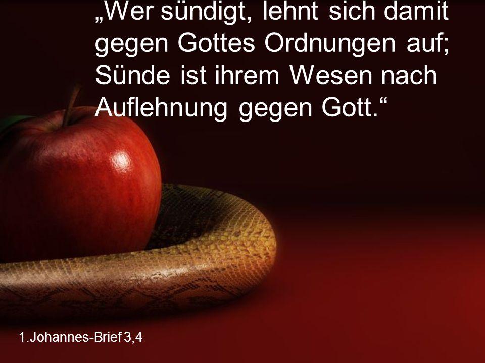 """""""Wer sündigt, lehnt sich damit gegen Gottes Ordnungen auf; Sünde ist ihrem Wesen nach Auflehnung gegen Gott."""