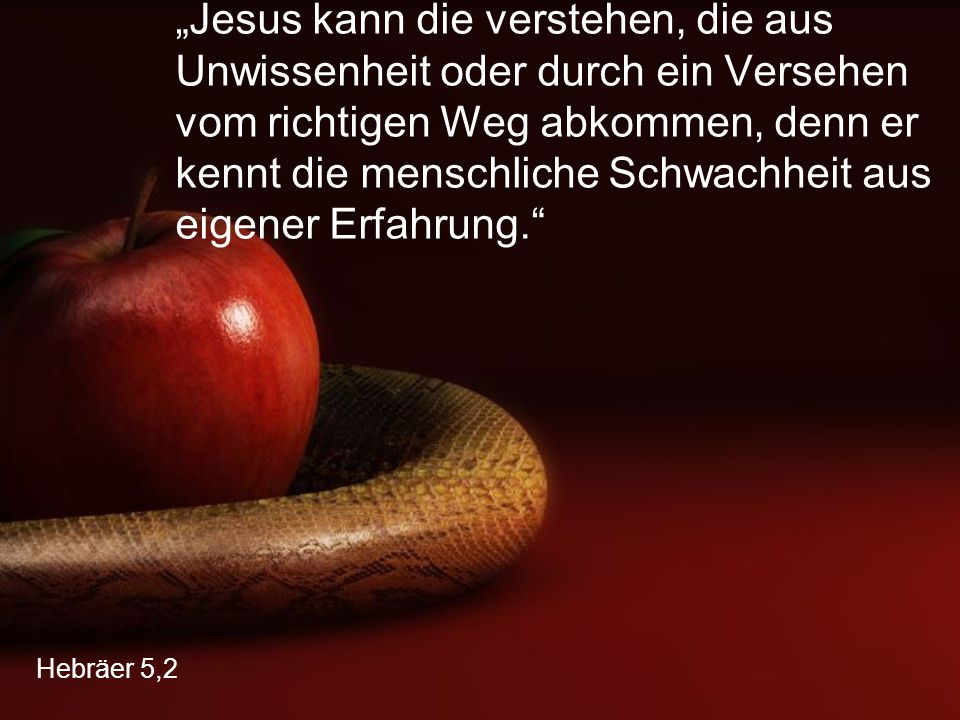 """""""Jesus kann die verstehen, die aus Unwissenheit oder durch ein Versehen vom richtigen Weg abkommen, denn er kennt die menschliche Schwachheit aus eigener Erfahrung."""