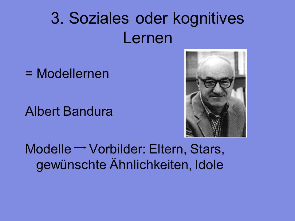 3. Soziales oder kognitives Lernen