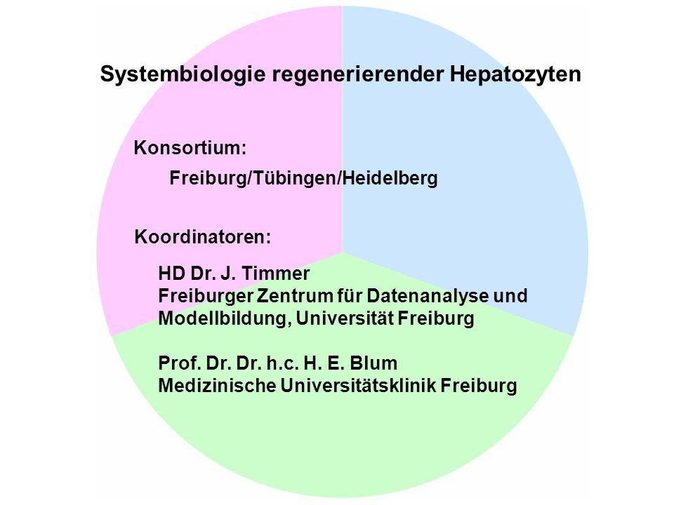 Systembiologie regenerierender Hepatozyten