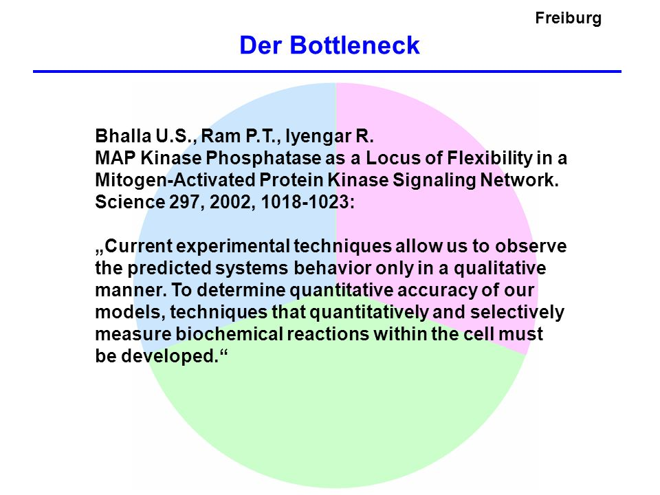 Der Bottleneck Freiburg Bhalla U.S., Ram P.T., Iyengar R.