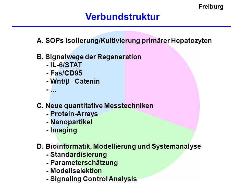 Verbundstruktur Freiburg
