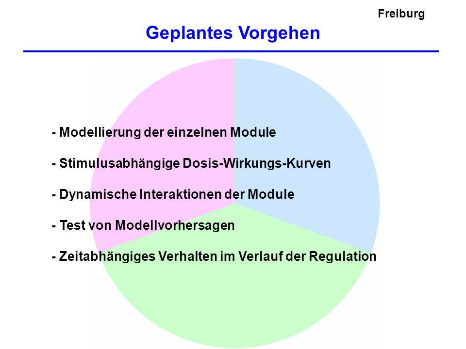 Geplantes Vorgehen Freiburg - Modellierung der einzelnen Module