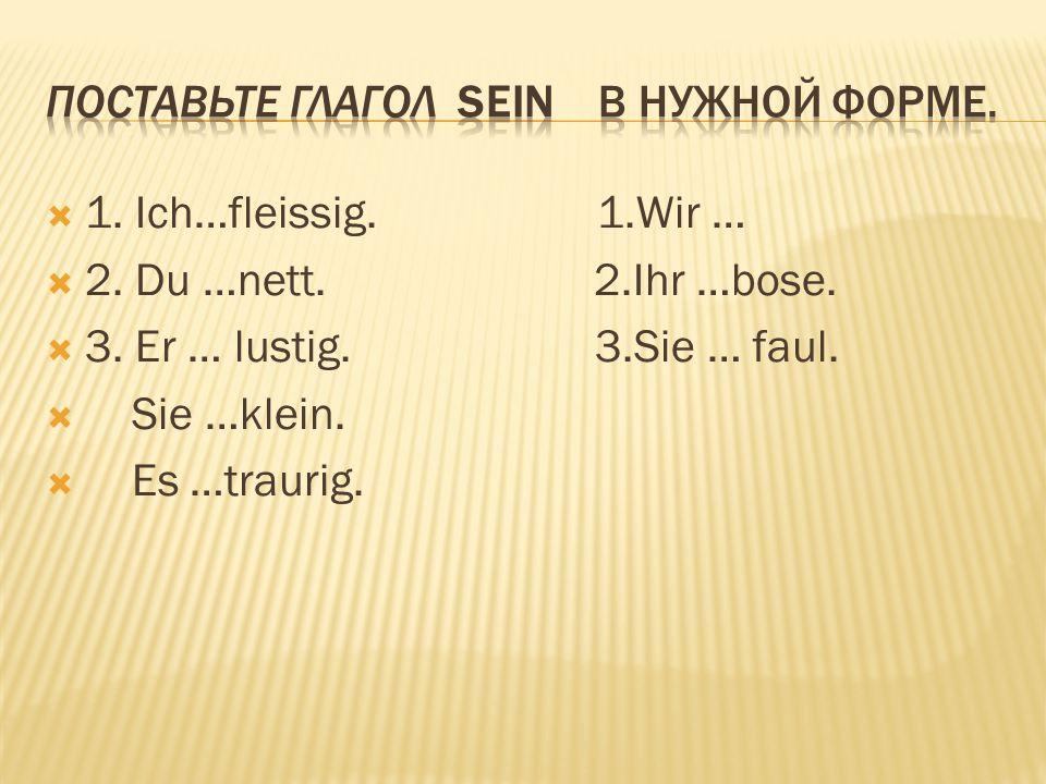 Поставьте глагол Sein в нужной форме.