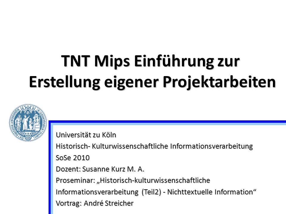 TNT Mips Einführung zur Erstellung eigener Projektarbeiten