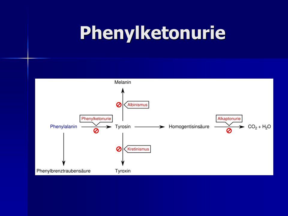 Phenylketonurie