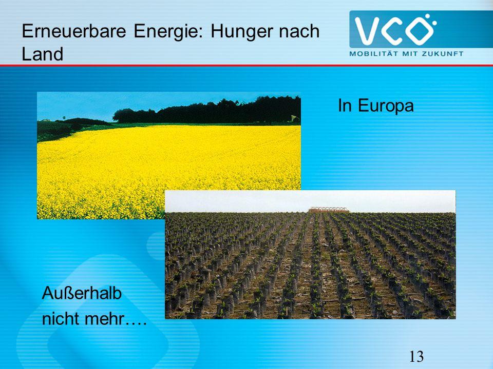 Erneuerbare Energie: Hunger nach Land