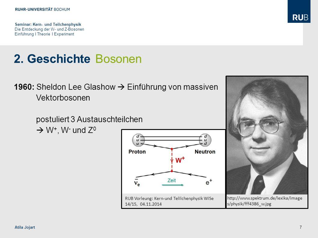 Seminar: Kern- und Teilchenphysik