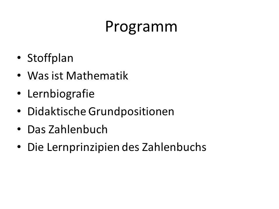 Programm Stoffplan Was ist Mathematik Lernbiografie