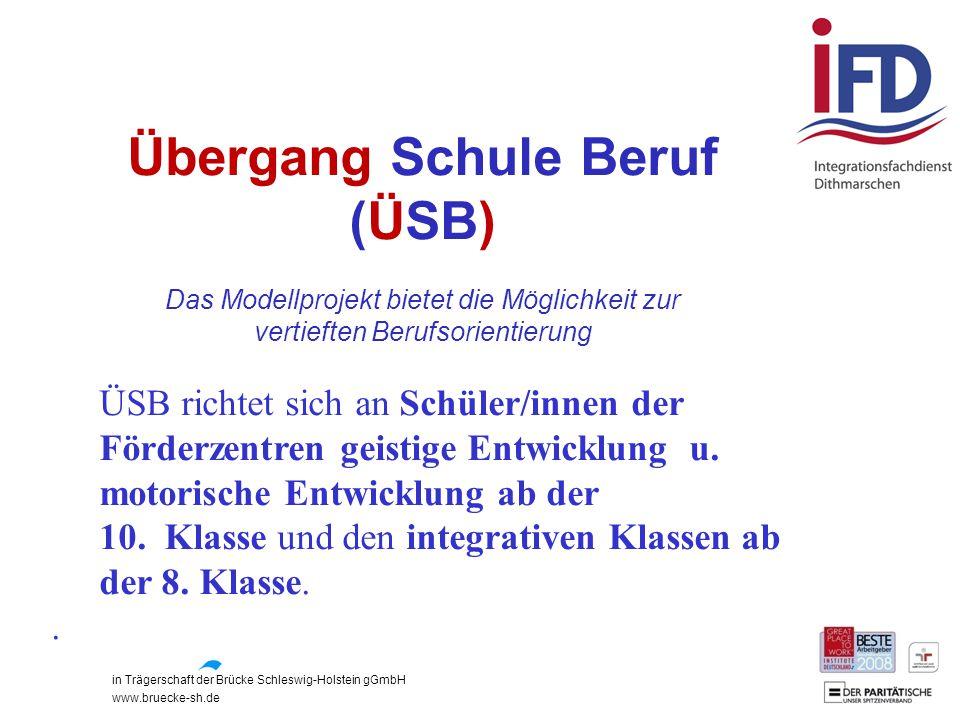 Übergang Schule Beruf (ÜSB)