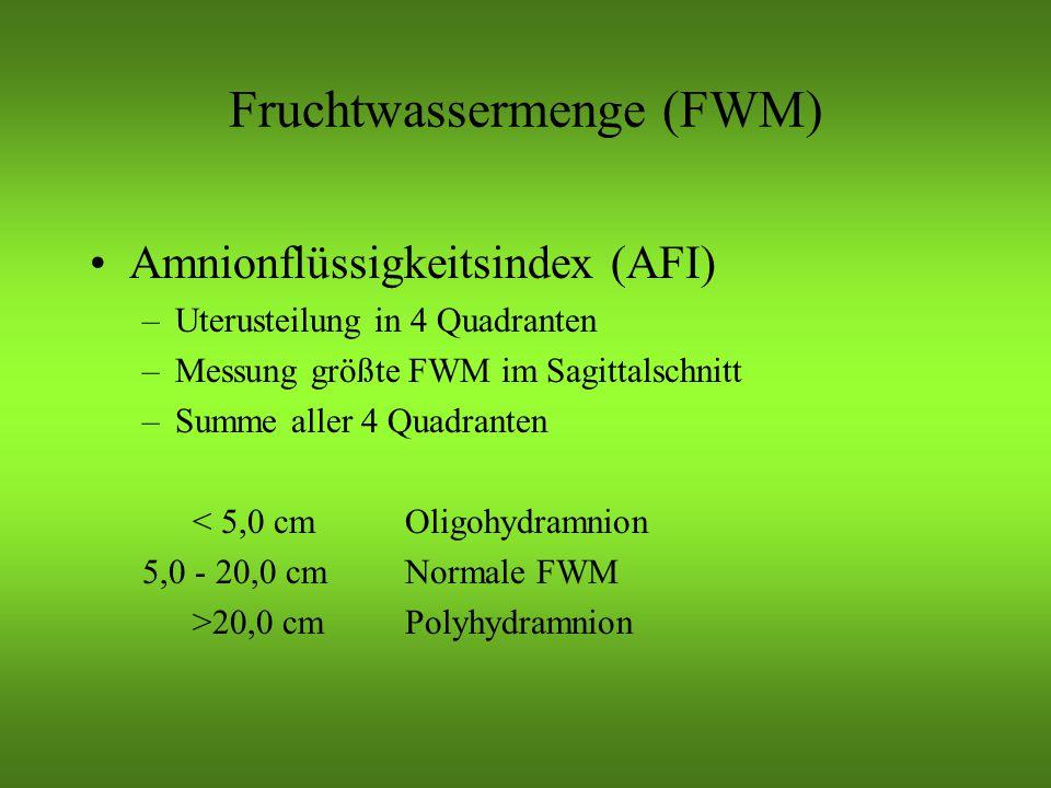Fruchtwassermenge (FWM)