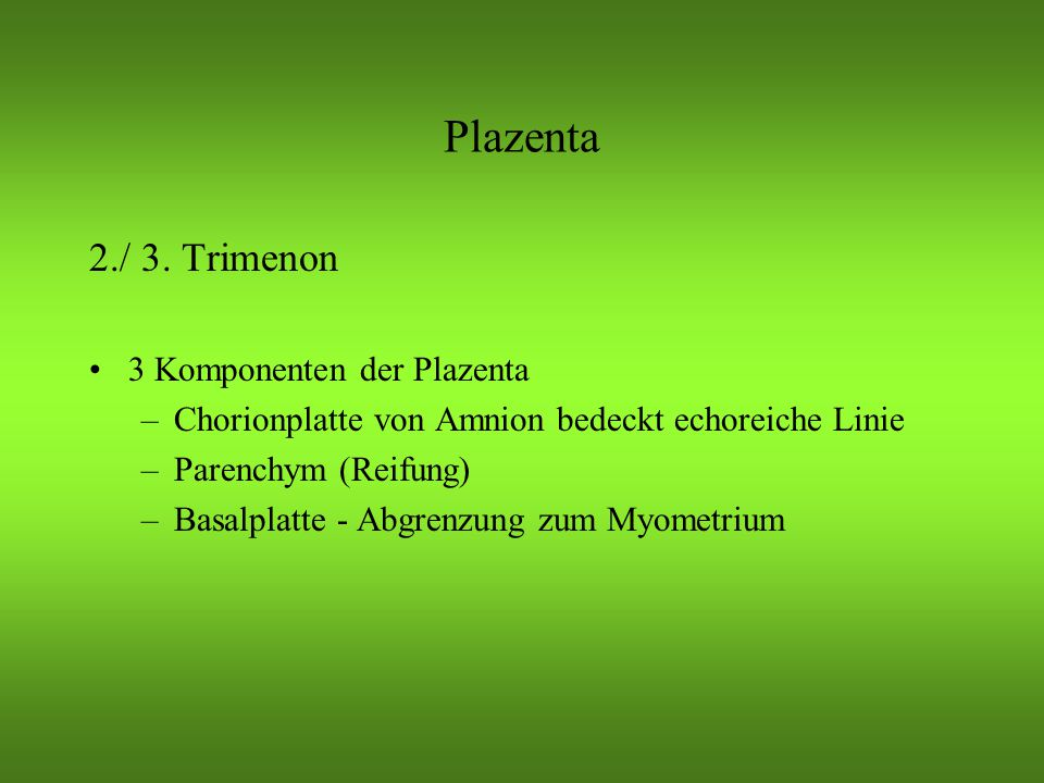 Plazenta 2./ 3. Trimenon 3 Komponenten der Plazenta