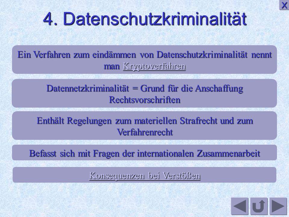 4. Datenschutzkriminalität