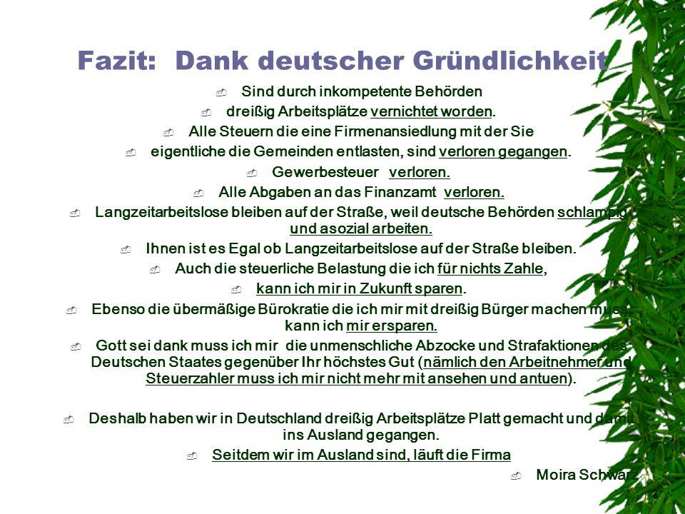 Fazit: Dank deutscher Gründlichkeit