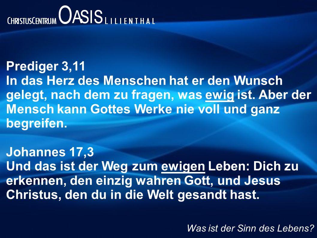 Prediger 3,11