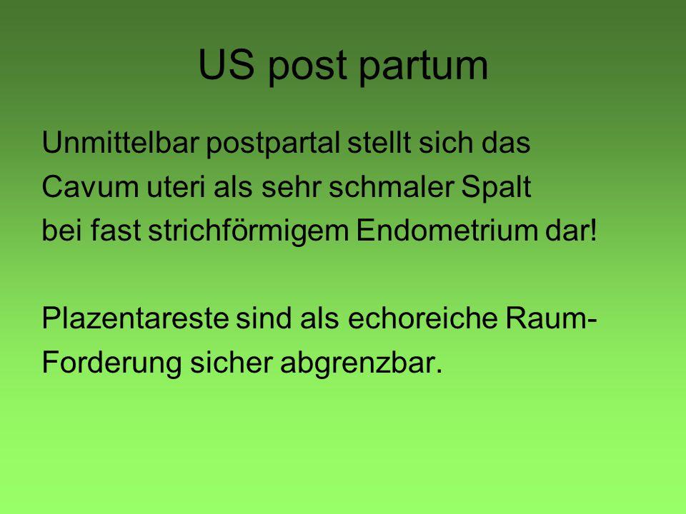 US post partum Unmittelbar postpartal stellt sich das