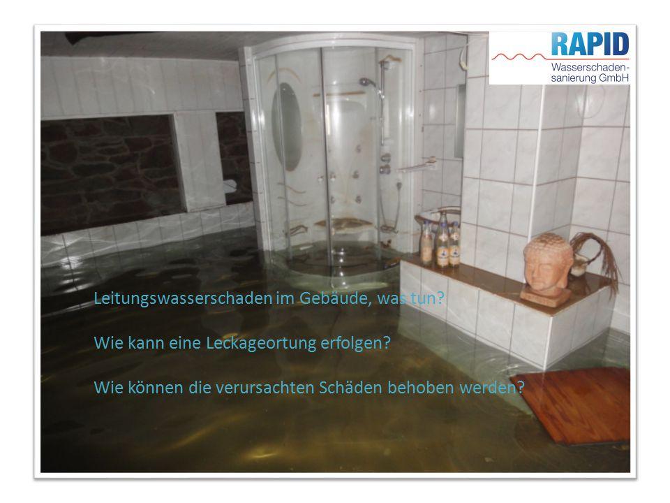 RAPID Wasserschadensanierung GmbH