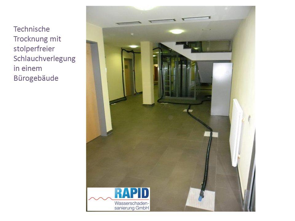 Technische Trocknung mit stolperfreier Schlauchverlegung in einem Bürogebäude
