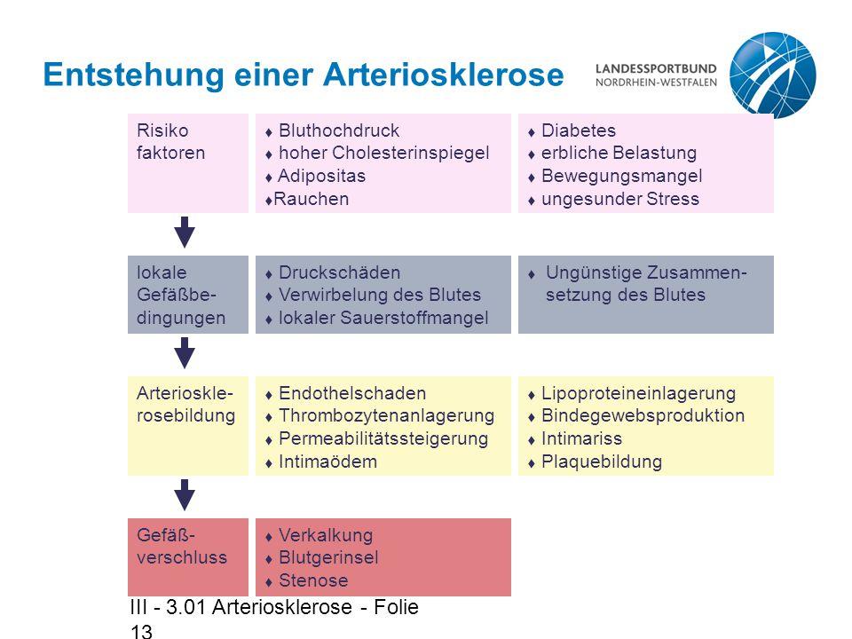 Entstehung einer Arteriosklerose