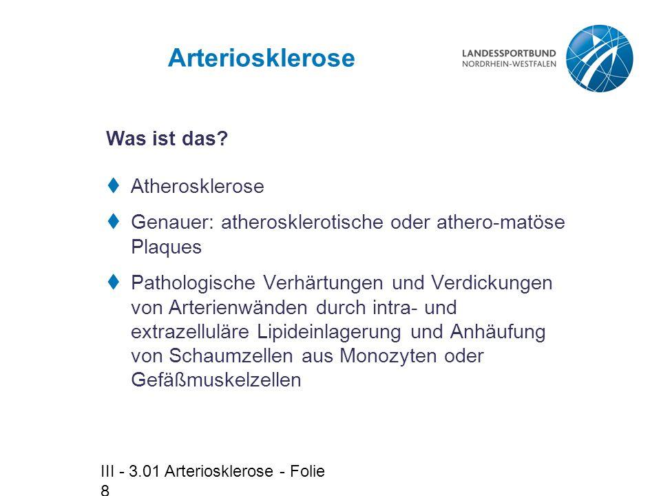 Arteriosklerose Was ist das Atherosklerose