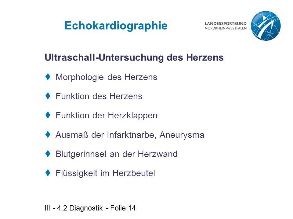 Echokardiographie Ultraschall-Untersuchung des Herzens