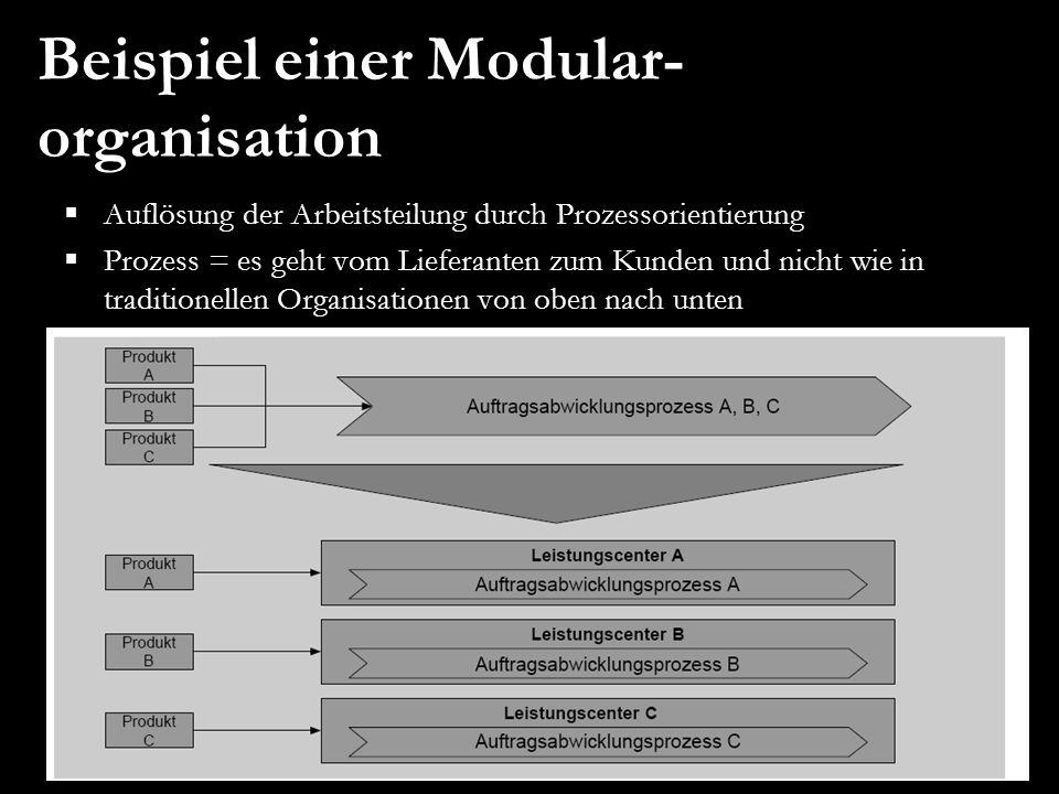 Beispiel einer Modular-organisation