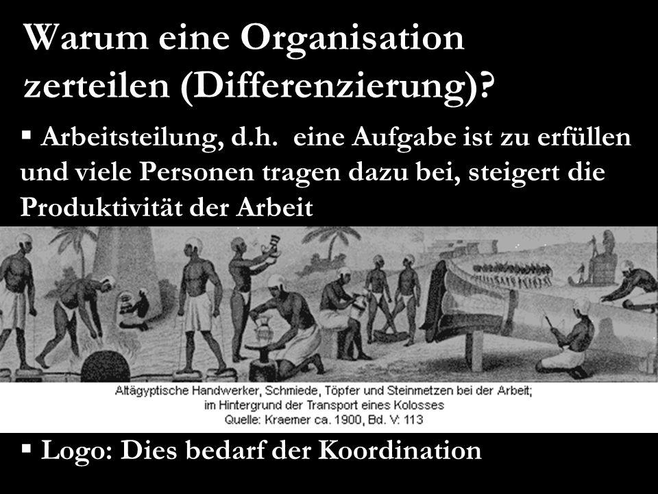 Warum eine Organisation zerteilen (Differenzierung)