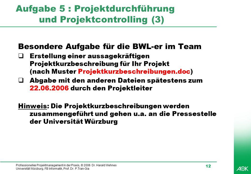 Aufgabe 5 : Projektdurchführung und Projektcontrolling (3)
