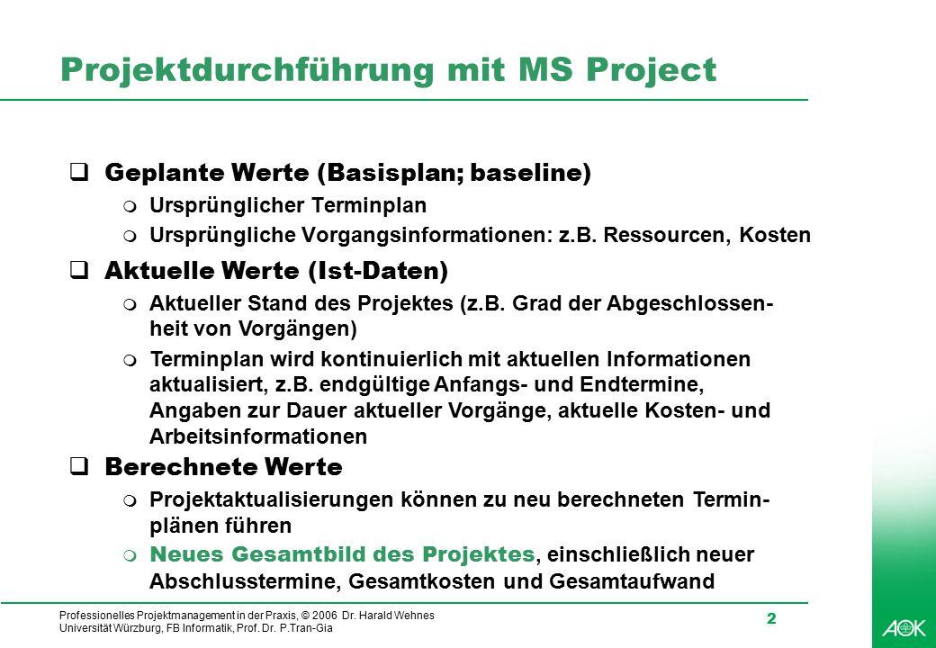 Projektdurchführung mit MS Project