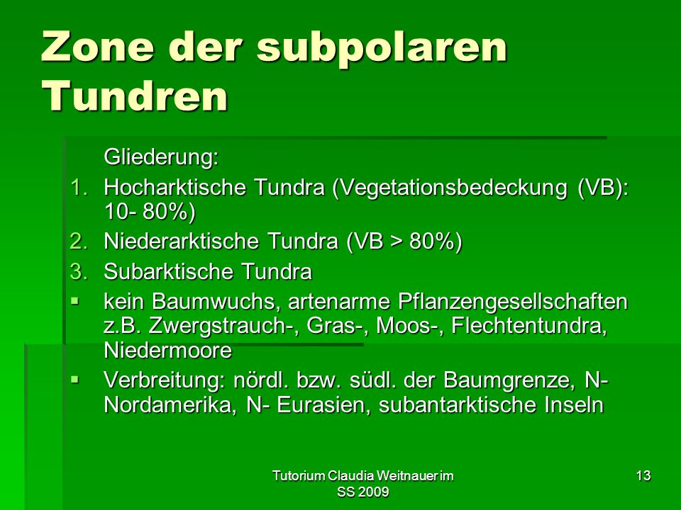 Zone der subpolaren Tundren