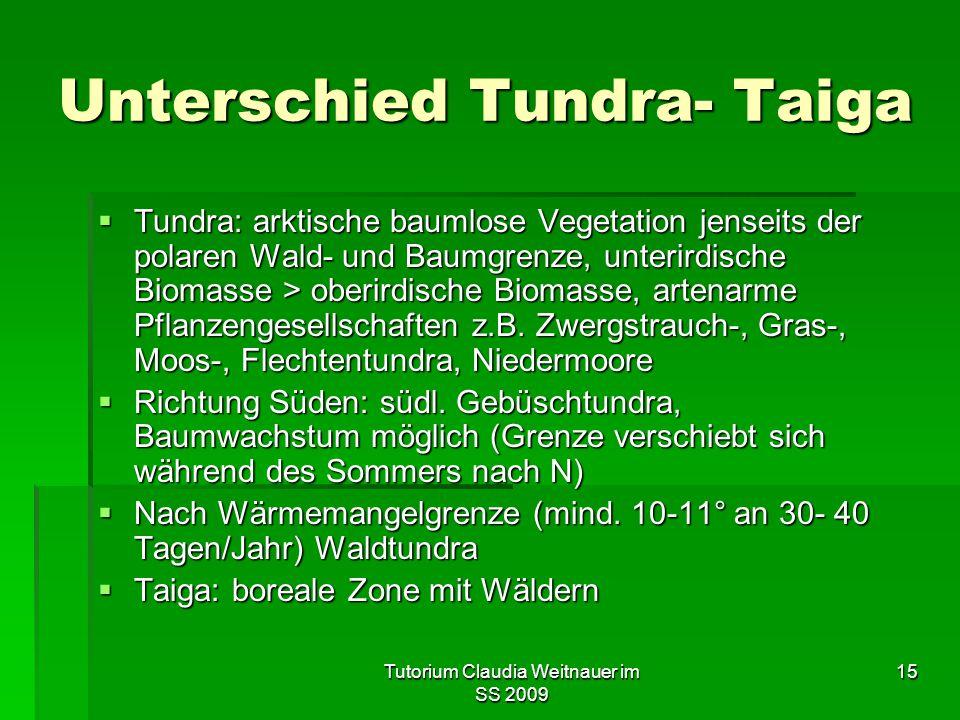 Unterschied Tundra- Taiga
