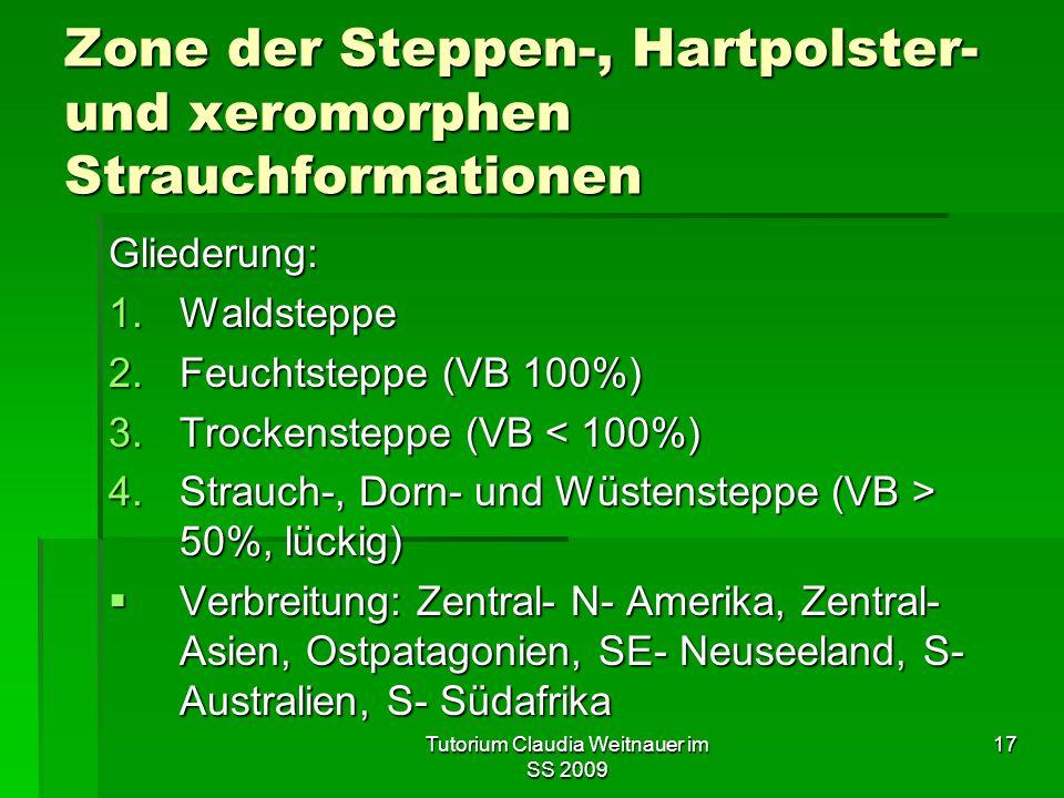 Zone der Steppen-, Hartpolster- und xeromorphen Strauchformationen
