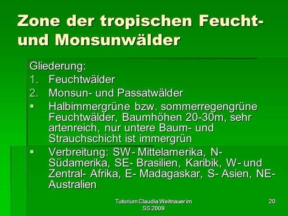 Zone der tropischen Feucht- und Monsunwälder